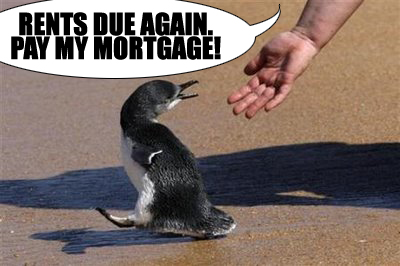 penguin pays mortgage